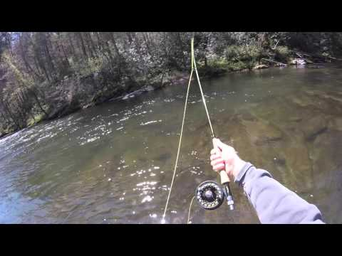 #7 -  Fishing The Tellico River TN - Fishing The Top 100 Trout Streams In America