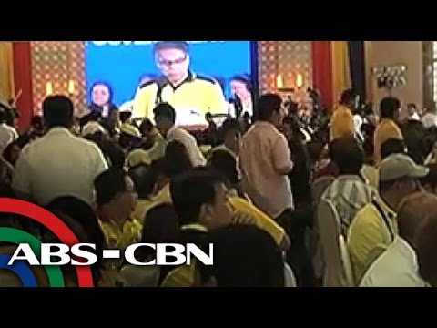 Allies rally behind Mar Roxas