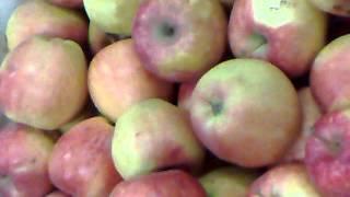 Молдавские яблоки из села Пепень. ...ПОЛНЫЙ ПИПЕЦ