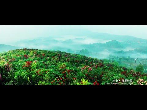 Guizhou Feeling (Colorful Guizhou)