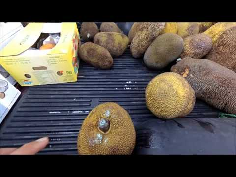 SCV LA WholeSale Produce Market, FREE Boxes of Coconuts, Papayas, Melons, Tomatoes, & 29 Jack Fruits
