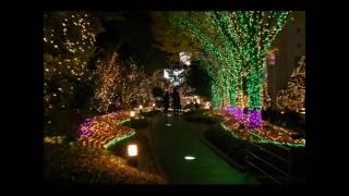 Toshiki Kadomatsu - Midnight Girl - 角松 敏生