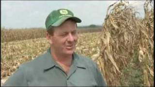 Drought in the Heartland Hurts Harvest: America
