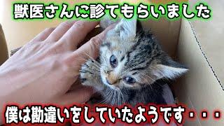 【保護猫】初めての病院でまさかの事実判明・・・