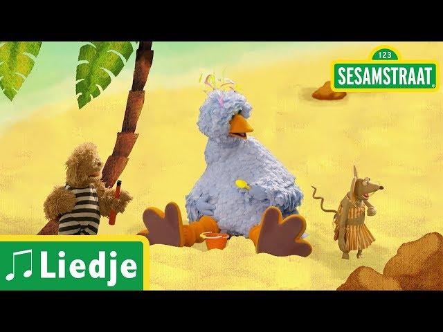 Zigeunermeisje - Kinderliedje - Sesamstraat