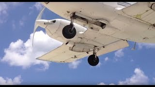 Extremely low landing Sint Maarten / Sint Martin airport SXM! 1.5 feet above my head