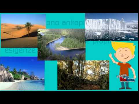 Paesaggi naturali e antropici  YouTube
