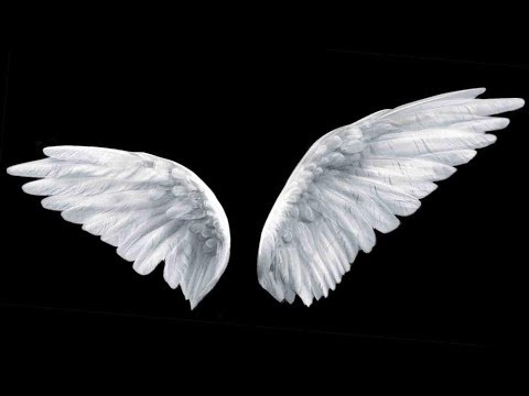 Angel Chat: Raising Angel Investment TIE Launchpad & Sand Hill Angels