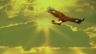 Download Leo Rojas - El Condor Pasa - Matsuri Mp3 and Videos