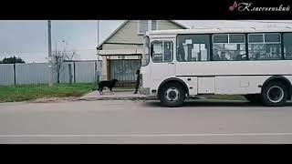 Песня Ильи Яббарова - Юность