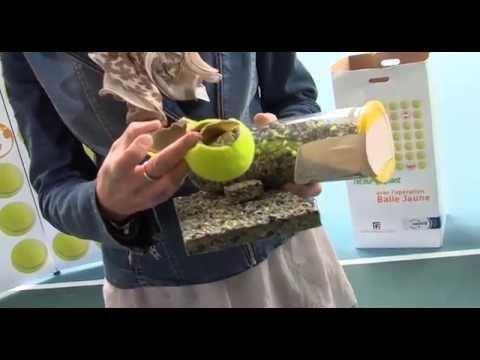 Exceptionnel Les balles de tennis recyclées pour créer des terrains de sport  ZV86