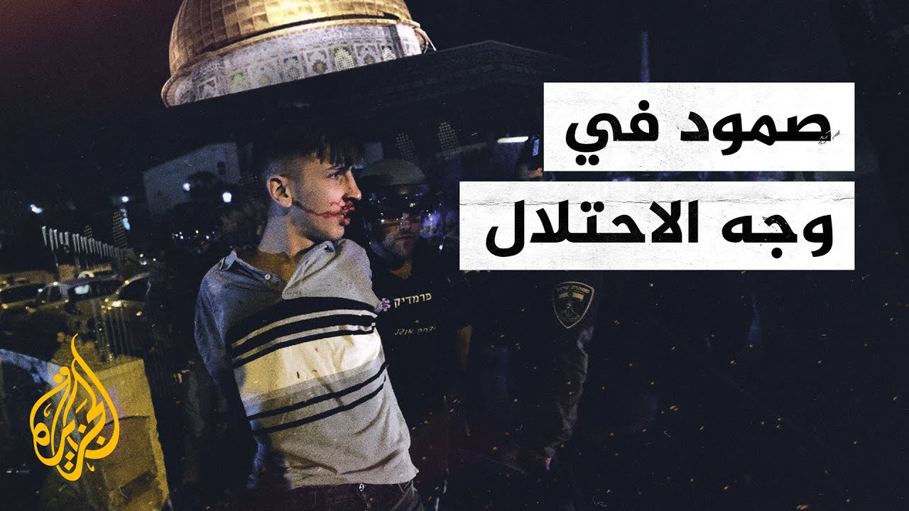 هبة الأقصى.. صمود في وجه الاحتلال  - نشر قبل 9 ساعة