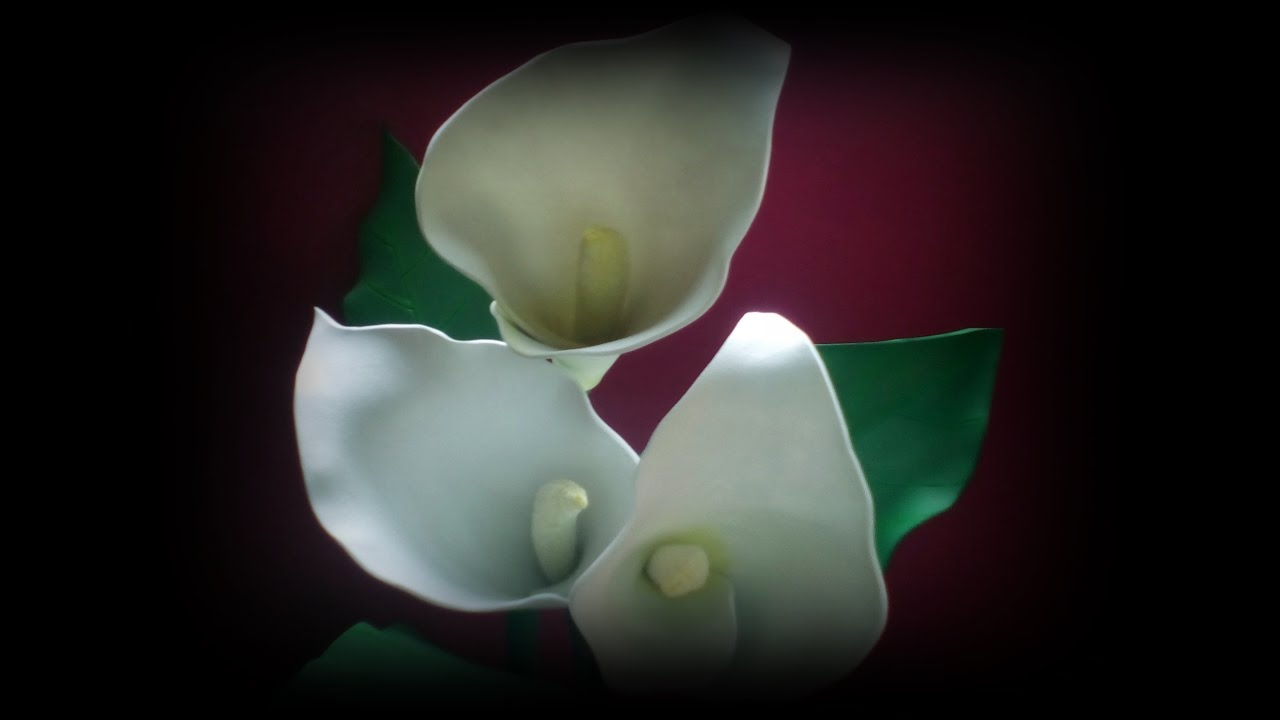 Flores de goma eva cala youtube - Flores de goma eva ...