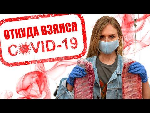 Причины коронавируса: ОТКУДА ОН НА САМОМ ДЕЛЕ? #коронавирус, #пандемия, #веганство