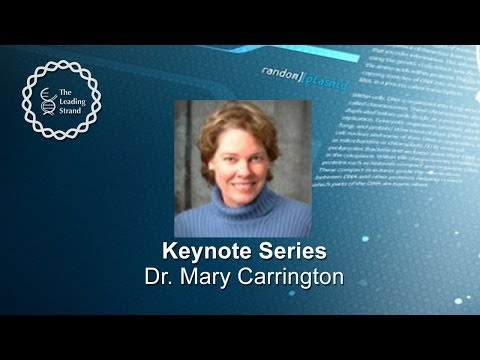 CSHL Keynote; Dr Mary Carrington, National Cancer Institute