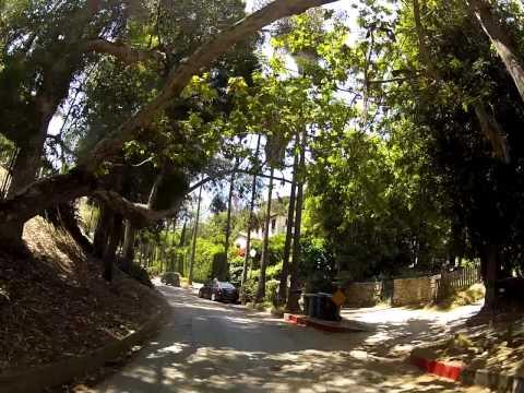 Jim Morrison Laurel Canyon