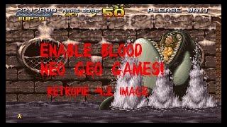 NEO GEO DIP SWITCHES BLOOD ENABLED! RETROPIE 4.2