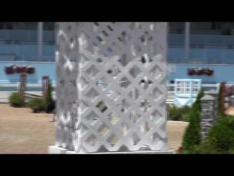 Video of PARADUXX ridden by SCOTT STEWART from Net!