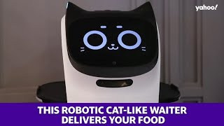 This robotic cat-like waiter delivers your food
