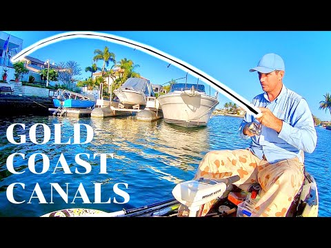 The Keys To Fishing The Gold Coast Canals - Trevally, Bream And Mangrove Jack Tactics