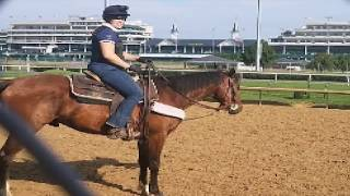 Leady Pony 101 Presented By Nupafeed: Practicing At Churchill Downs