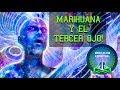 ESTO ES LO QUE PASA EN EL TERCER OJO CUANDO FUMAMOS MARIHUANA.......