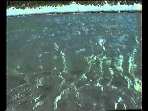 La spiaggia di Putzu Idu (1999)