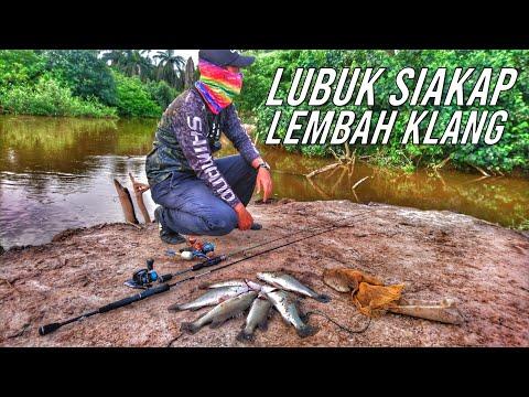 Download CASTING SIAKAP LIAR DI LUBUK RAHSIA BARRAMUNDI LEMBAH KLANG STRIKE BERTUBI TUBI