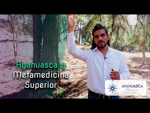 Ayahuasca y Metamedicina