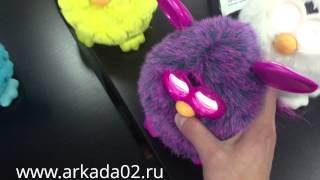 Furby разговаривают между собой