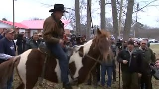 'Don't frighten the horses': Roy Moore arrives on horseback to cast vote