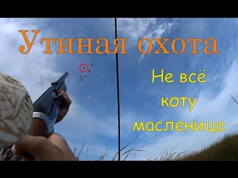 Блог охотника