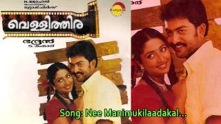 Nee Manimukilaadakal Vellithira.mp3