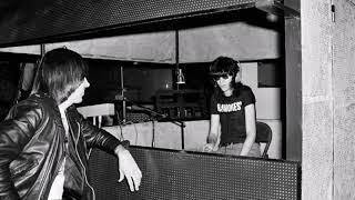 Ramones-The KKK Took My Baby Away (Demo version)