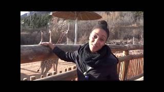 Waterhole Staff Profile - Veronica Premdas - Jan. 2018 thumbnail
