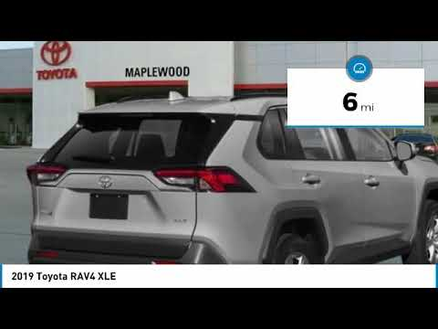 2019 Toyota RAV4 XLE Maplewood, St Paul, Minneapolis, Brooklyn Park, MN K13005