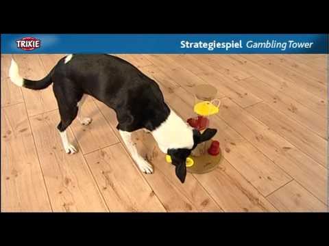 Dog Activity Gambling Tower Trixie Intelligenzspielzeug Strategiespiel für Hunde