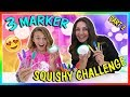 3 MARKER SQUISHY CHALLENGE PASS OR FAIL We Are The Davises mp3