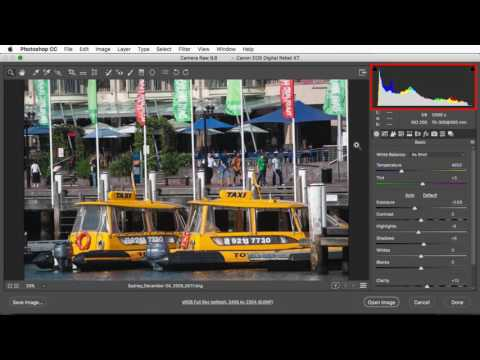 Color Management in Adobe Camera Raw