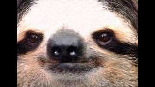 Sloth of Death