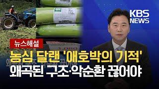 [뉴스해설] 농심 달랜 '애호박의 기적'…왜곡된 구조, 악순환 끊어야 / KBS 2021.07.29.