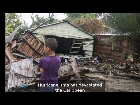 Norfolk families in the Caribbean survived Hurricane Irma and UNICEF has issued an appeal for aid