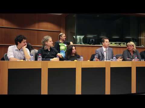 EU parliamentary Sogor Csaba attacking Romania