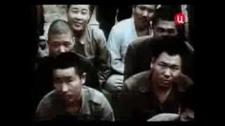 Бурбон, бомба и отставка главкома. Герои и жертвы холодной войны