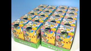 チョコエッグ ポケットモンスター サン&ムーン パート2プラス 20こ!! 20個でプラスの3種類は揃うかな?? 封入率の確認。