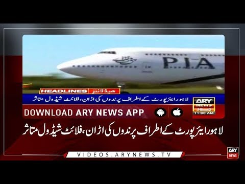 Headlines ARYNews 1100  17th July 2019