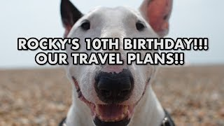 Rocky's 10th BIRTHDAY and our future TRAVEL PLANS!!