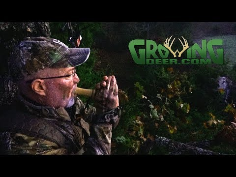 Deer Hunting 2018: First Cold Front Action (#465) @GrowingDeer.tv