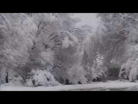 terrell texas nevando y despues