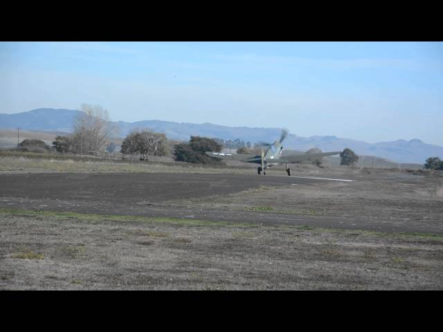 P40 Warhawk flight out of Sonoma Valley Airport